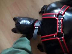 Rubber Puppy Play In Rubber Waders