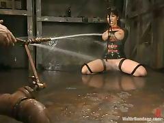 Big breasted Ava Devine gets tortured in water bondage video