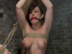 Gorgeous Jennifer White gets toyed in hot bondage video